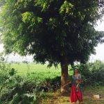 288 - Indiako emakumea