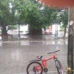 338 - Santa Clara inguruan Irma urakanaren ondorioak 1