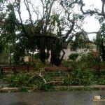 340 - Santa Clara inguruan Irma urakanaren ondorioak 3