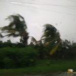 342 - Santa Clara inguruan Irma urakanaren ondorioak 5