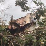 336 - Sagua inguruak Irma urakanaren ondoren 1