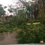 337 - Sagua inguruak Irma urakanaren ondoren 2