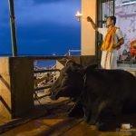 254 - Benares hiri sainduan