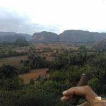 303 - Tabako plantazioak begira Viñalesen